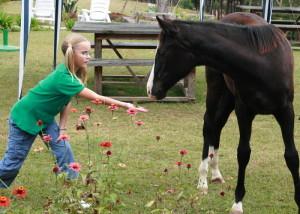 Birgit liker hester. Denne folen gikk fritt omkring på l'Hermitage